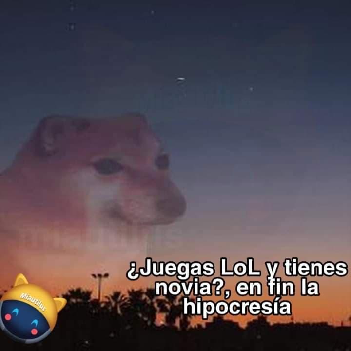 Memes de cheems
