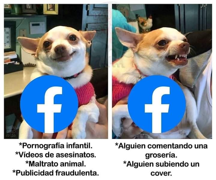 Bloqueado en Facebook