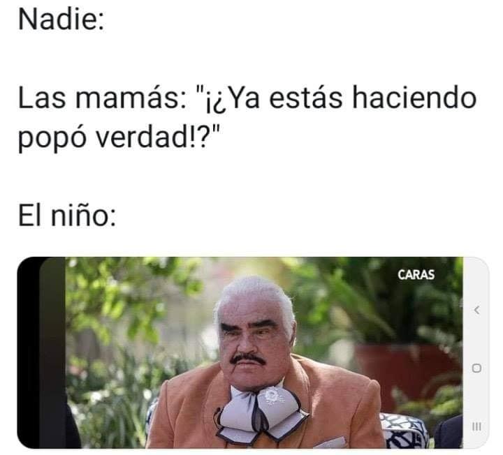 Memes de Vicente Fernández