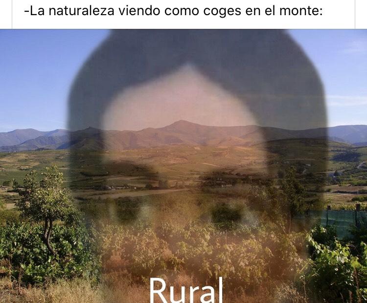Memes brutales