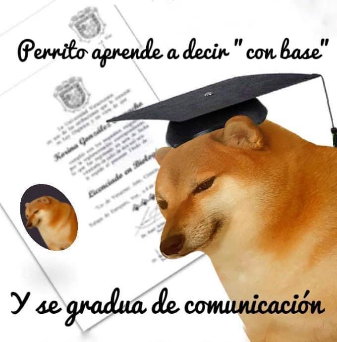 Animales graduados
