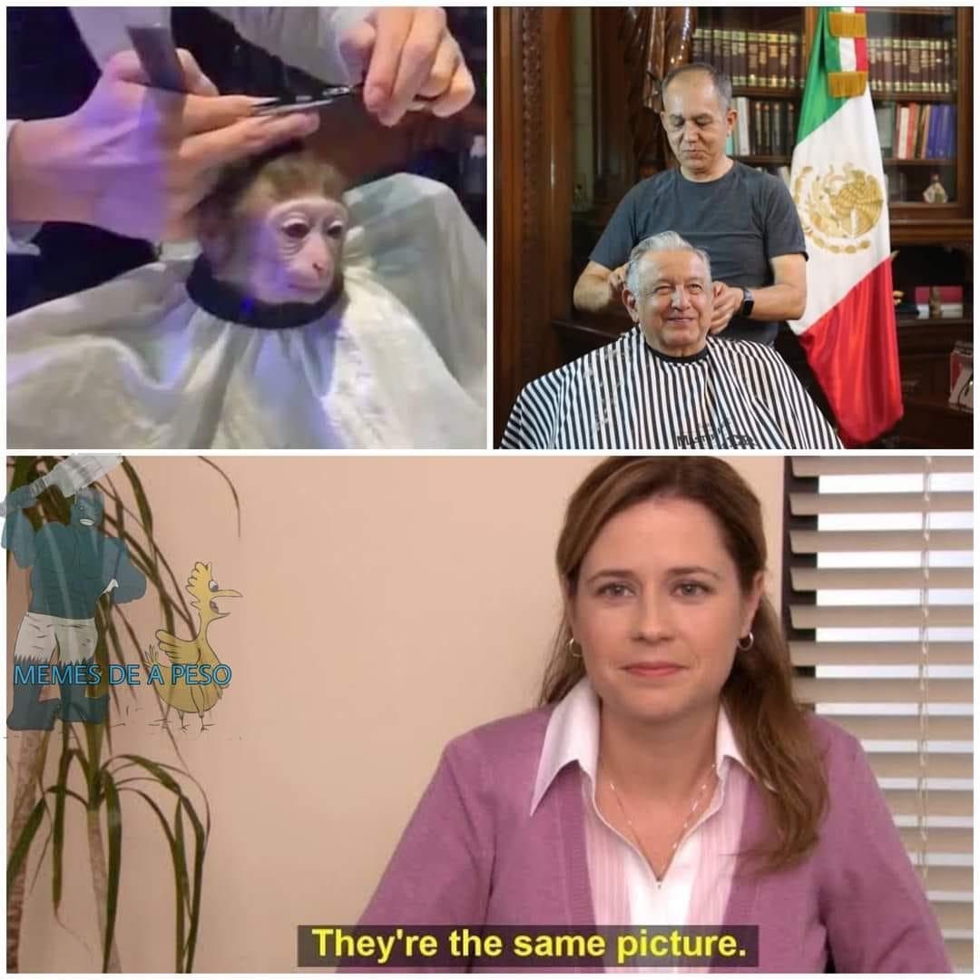 Memes de AMLO