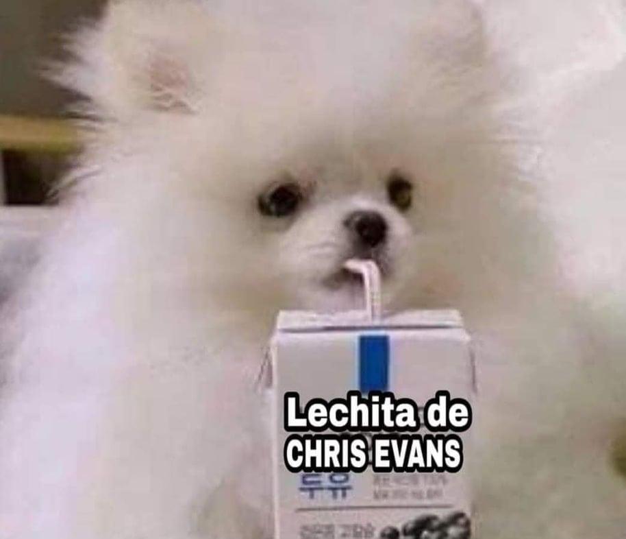 Memes de la leche de Chris Evans