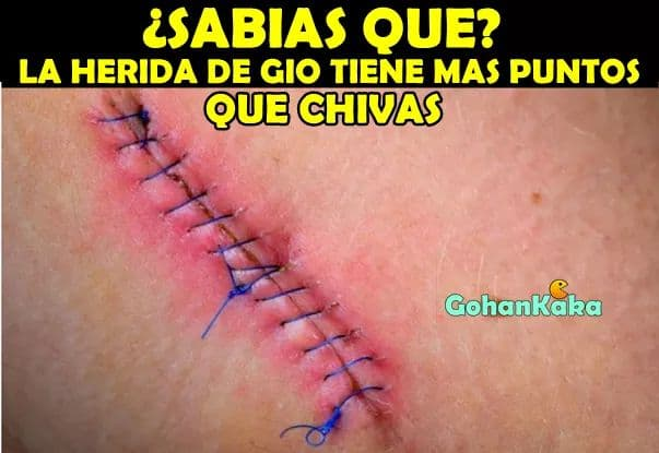 Memes de la Liga MX, Jornada 12