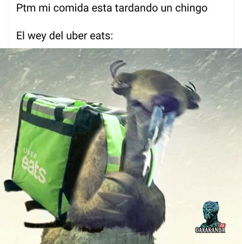 Memes para el frío