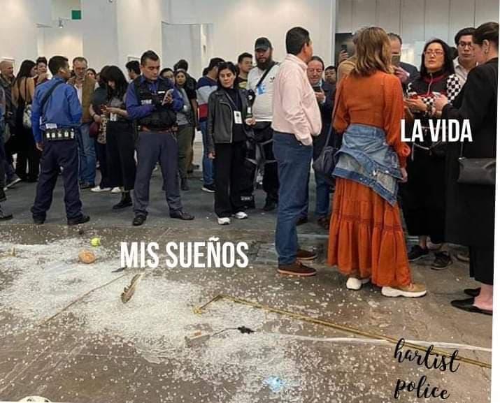 Memes de la obra destruida en Zona Maco