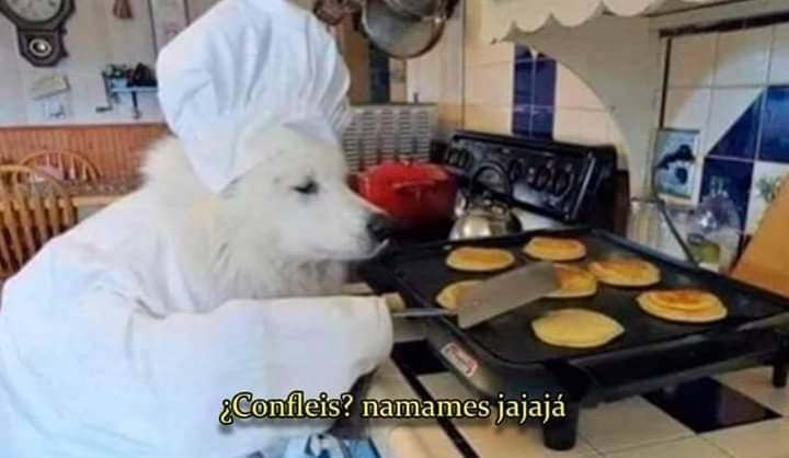 Memes del perro del cereal