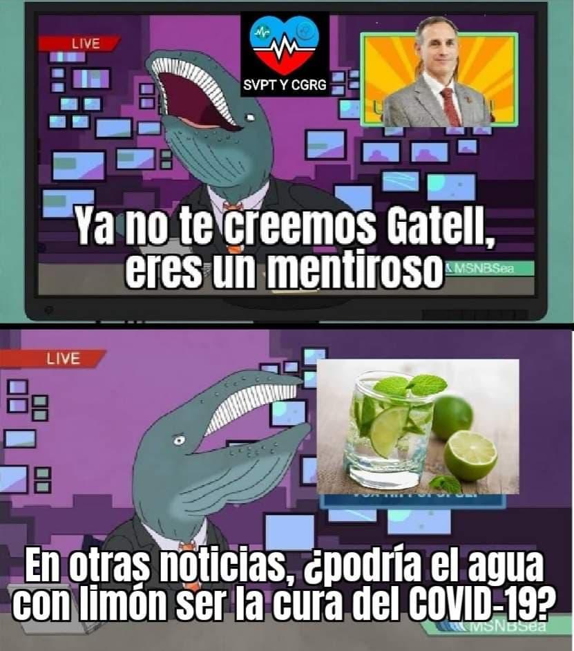 Memes de Javier Alatorre vs López-Gatell