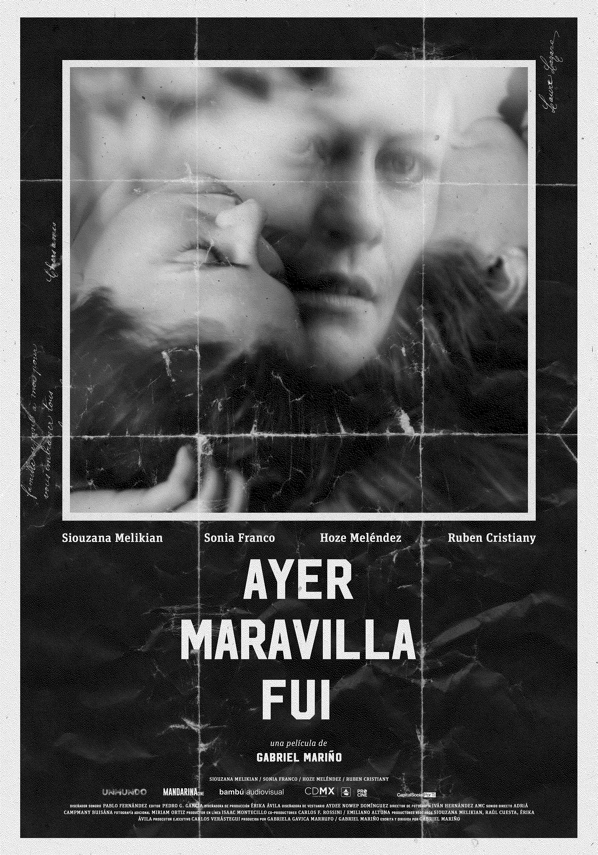 Ayer Maravilla Fui: elenco y sinopsis | PandaAncha.mx