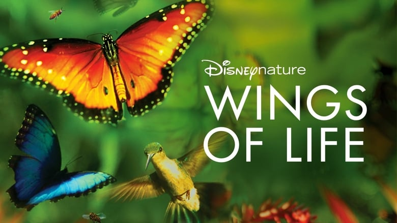 Documental Wings of Life de DisneyNature en Disney Plus