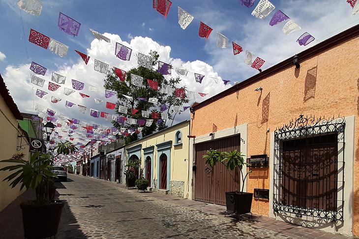 Excursiones para realizar en Oaxaca | PandaAncha.mx