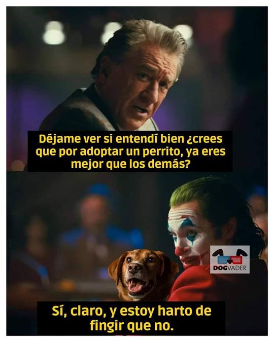 Memes del Joker