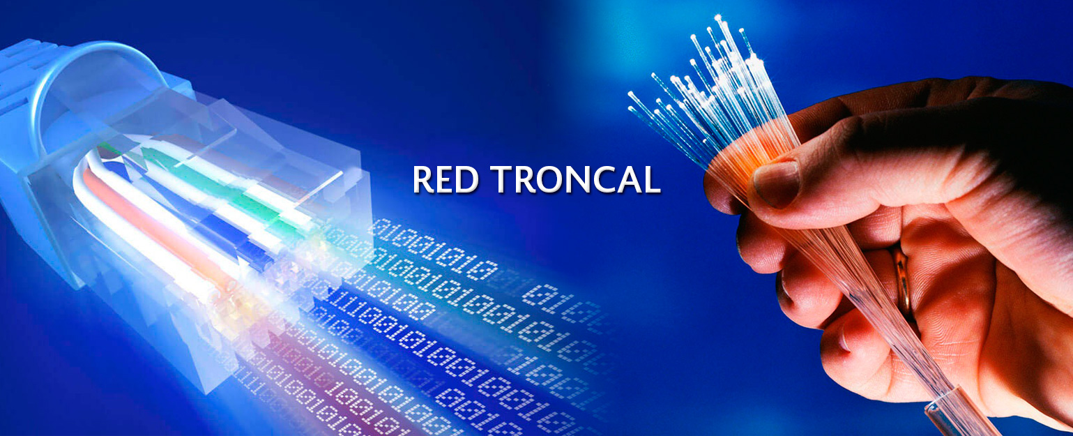 Red Troncal
