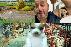 Memes del perro panzón, zocavón, viajero en el tiempo y más.